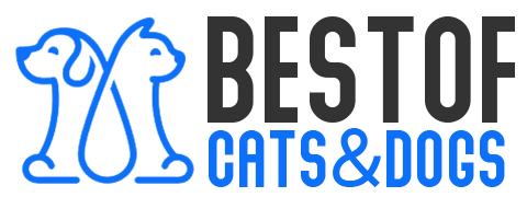 Best of Cats and Dogs
