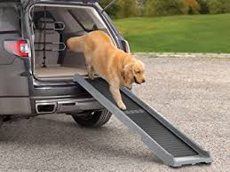 TOP 5 Best Dog Car Ramps 2021 Review