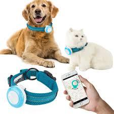 Best GPS Dog Collars