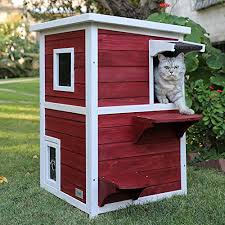 Best Outdoor Playhouses for Cats