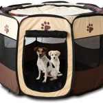 Best Portable Pet Playpens