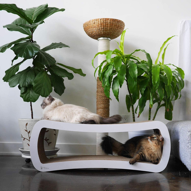 Best Infinity Cat Scratcher Lounges