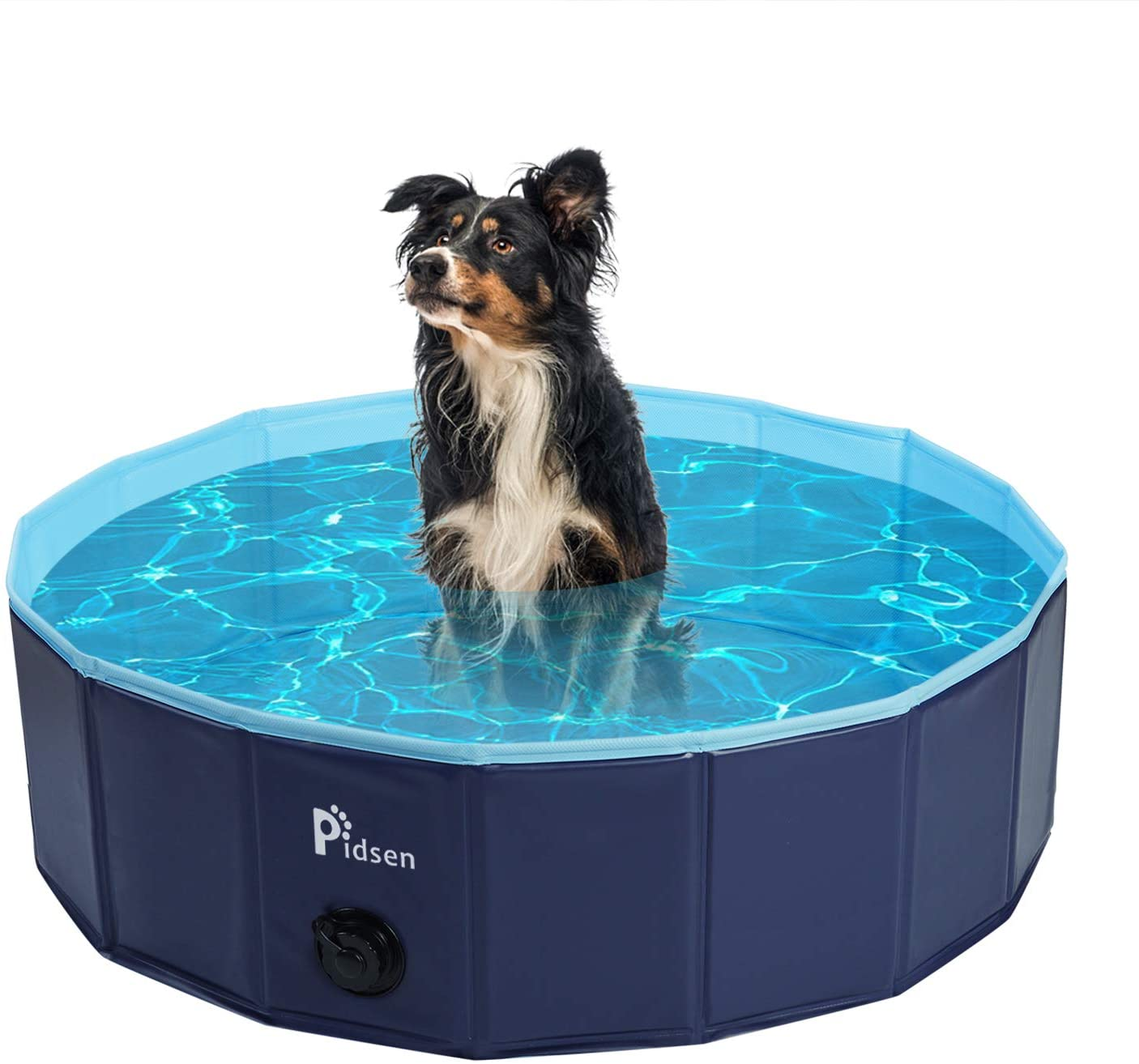 Best Foldable Dog Pools