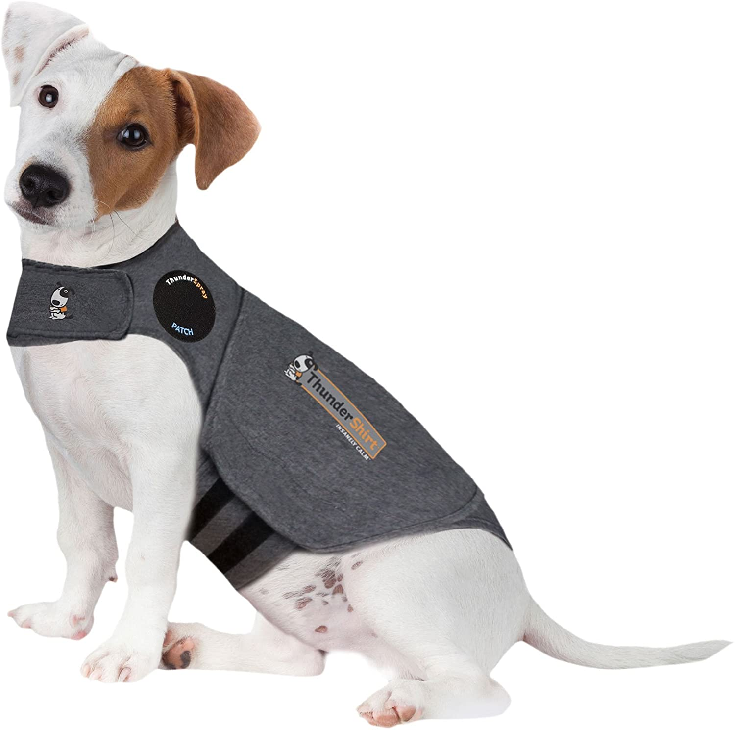 Best Anxiety Vests for Dogs