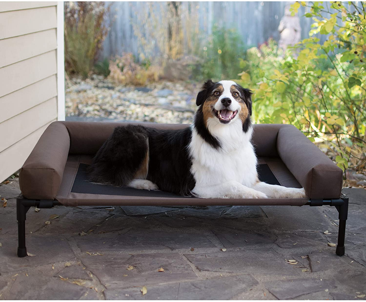 Best Elevated Pet Beds
