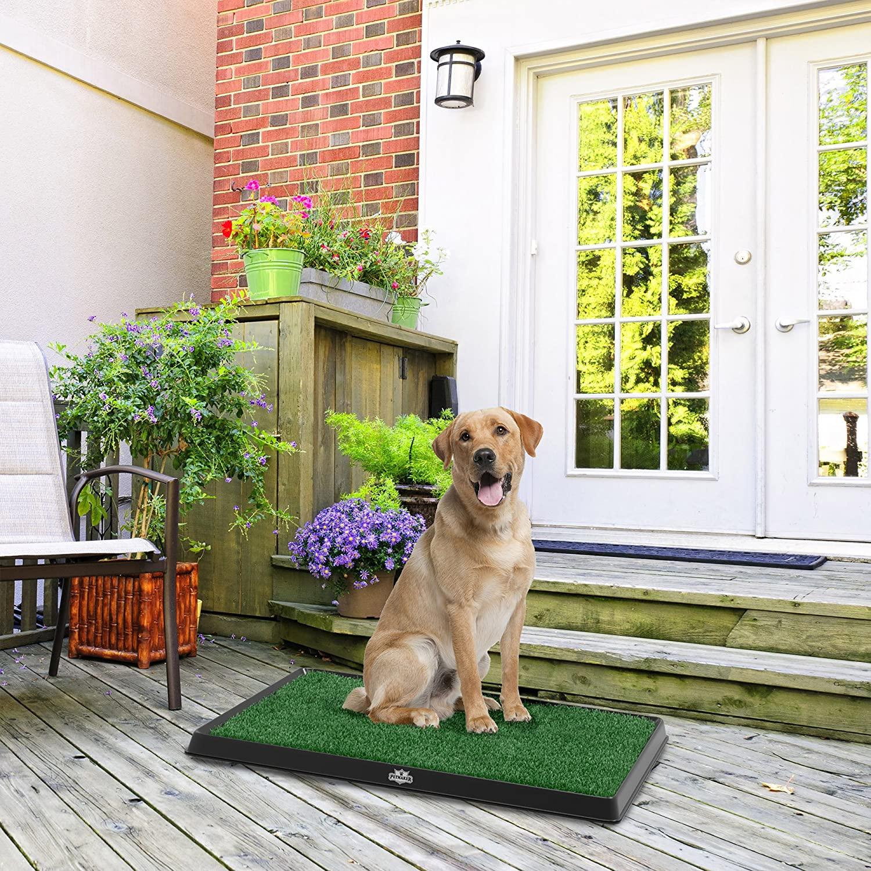Artificial Grass for Dog Potty