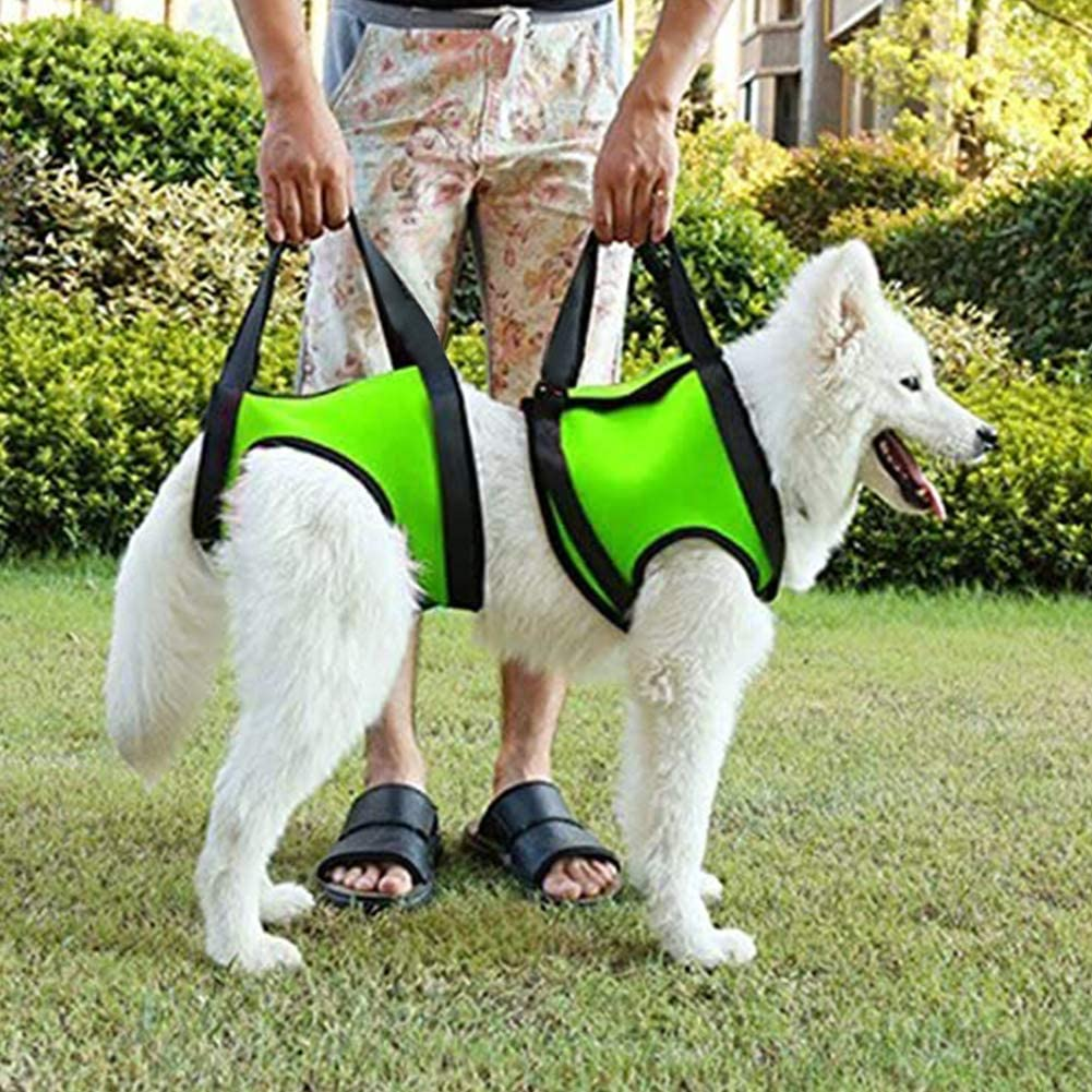 Best Dog Lift Support Harnesses