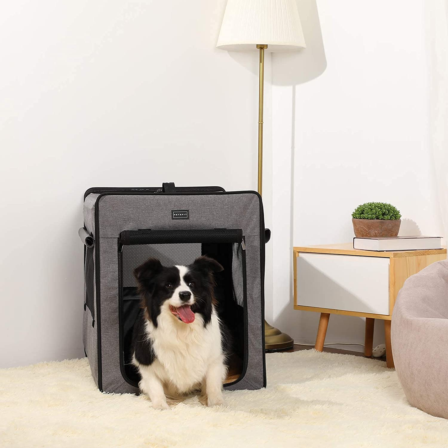 Collapsible Dog Kennels