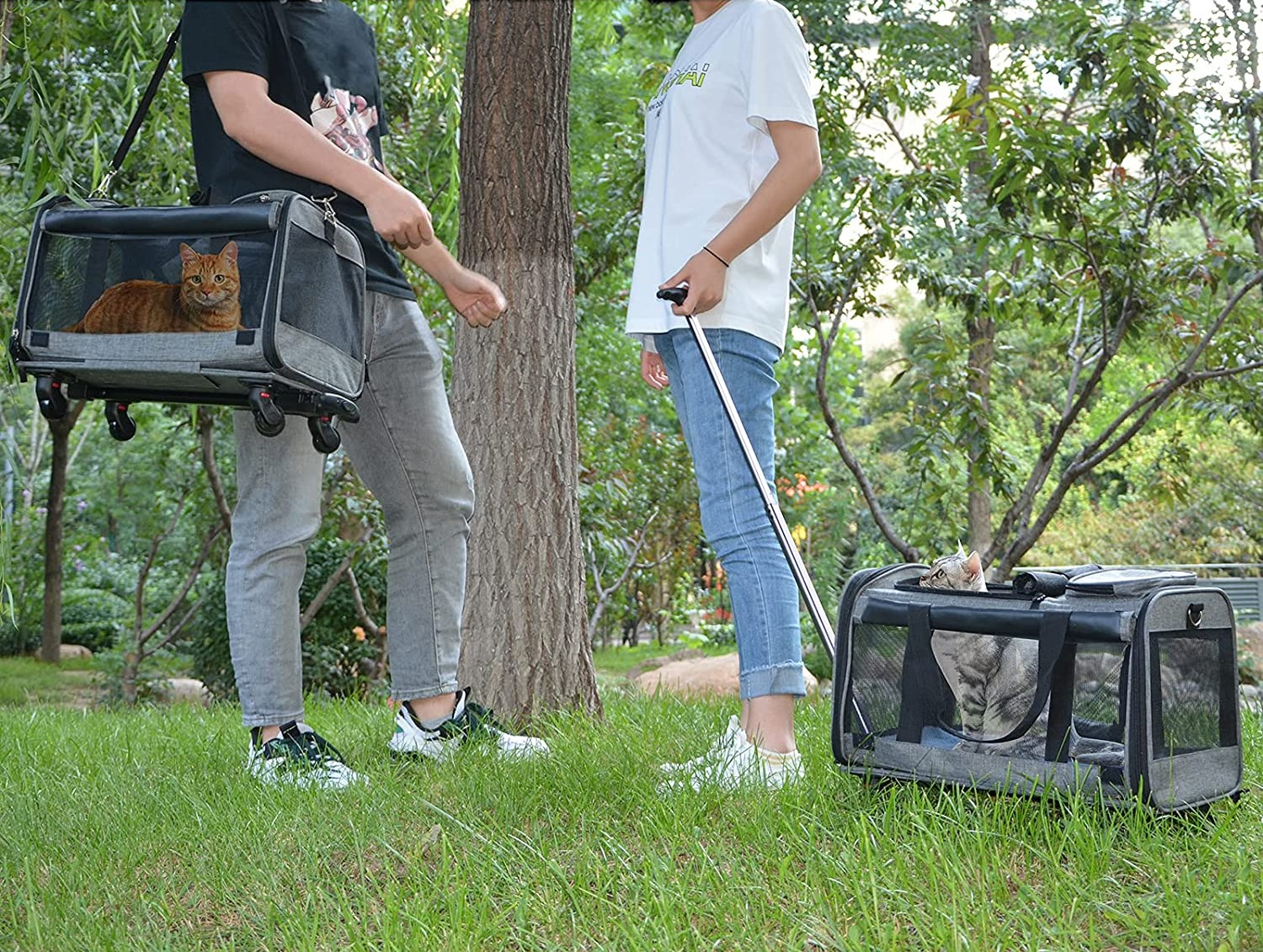 Rolling Carriers for Pets